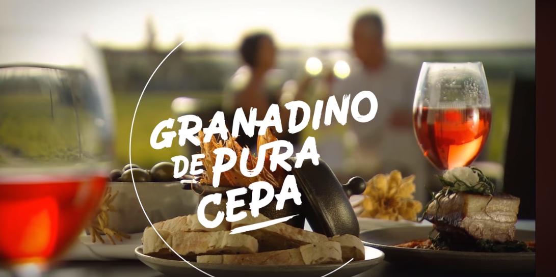 Granadino de pura cepa, Diputación de Granada