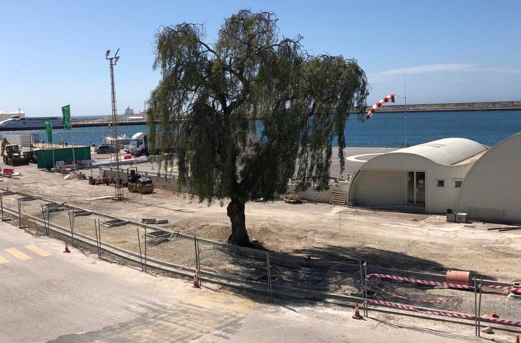 vial principal Puerto de Motril