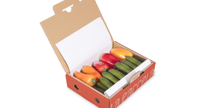 Caja Freshlybox