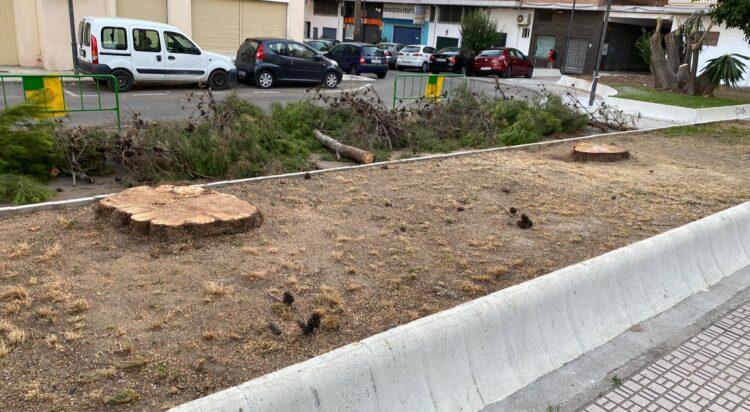 Árboles talados en La Huerta de la Condesa