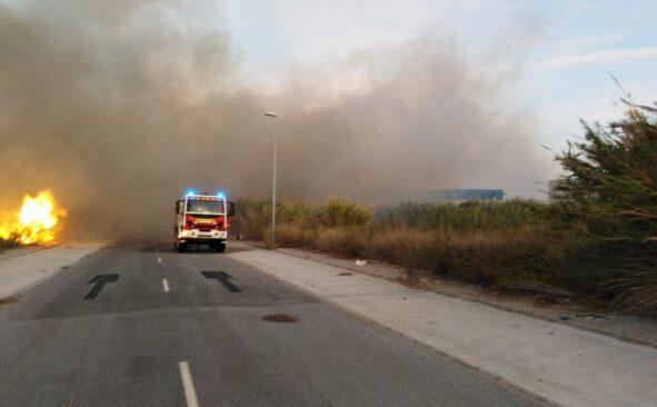 Arde una zona de cañaveral próximo a la carretera de la Celulosa