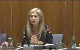 Patricia del Pozo, durante su comparecencia ante la Comisi on de Cultura