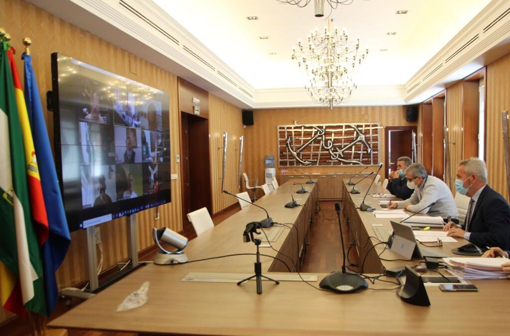 Puerto de Motril reunión telemática