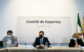 Comité de expertos junta de Andalucía